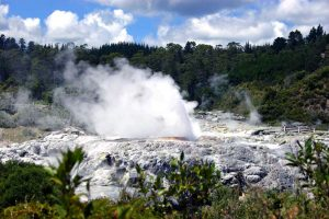 Nuova Zelanda e natura: quando andare?
