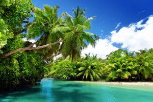 Seychelles, il periodo migliore
