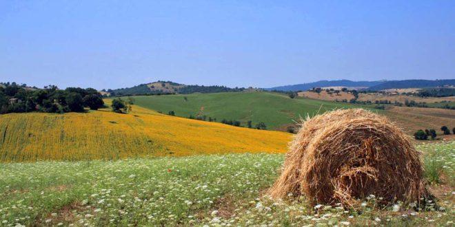 Maremma (Toscana): quando andare